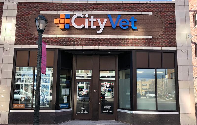 Capitol Hill CityVet